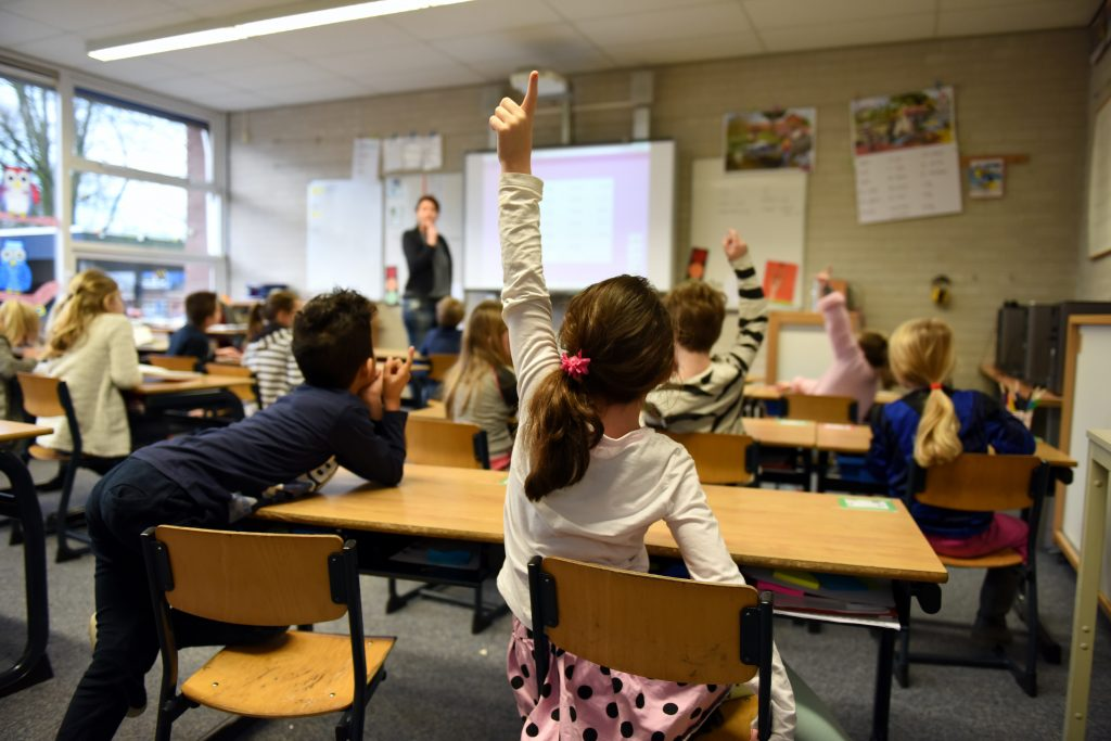 View of teacher from back of classroom as several young students raise their hands